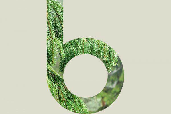 Finbex Oy:n logon, visuaalisen ilmeen & nettisivujen design & toteutus