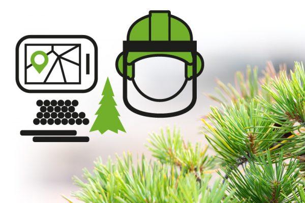 Etapio ForestKIT -metsätietojärjestelmän logon, ilmeen, nettisivujen & mark.materiaalien design & toteutus